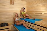 Spacious sauna of Aqua Spa Wellness Hotel Cserkeszolo - available for the guests of the apartments and bungalows too